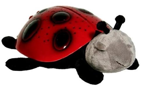 Ladybird night light