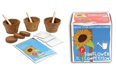 Plants For Kid's Rooms - Junior Rooms