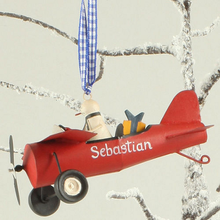 Little snowman in personalised plane